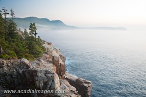 Overlooking Otter Cliffs on a misty dawn, Acadia National Park, Maine's Rockey Coast