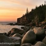 Otter Cliffs summer sunrise. Acadia National Park.
