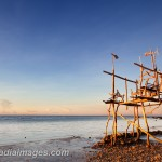 A natural wood structure off the sore of Tudela, Camotes, Philippines
