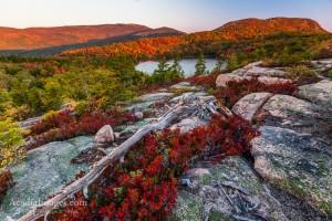 Fall Foliage on the Beehive, acadia national park, maine